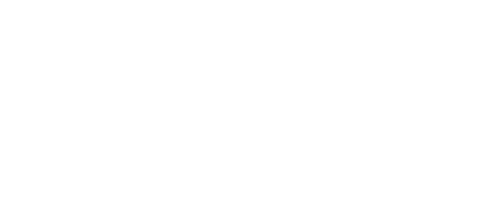 Lash it shop Logo